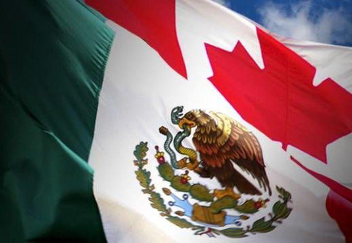 Empresa Canadiense Busca Mexicanos Calificados Noticias De Mexico