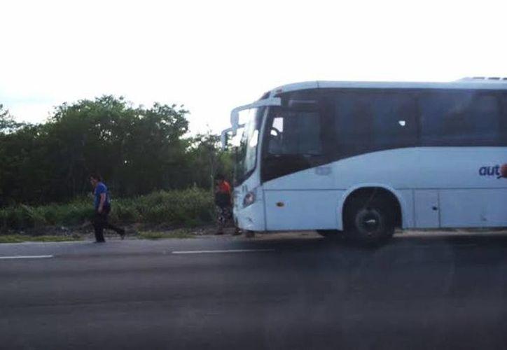 El autobús quedó varado a un costado de la carretera Progreso-Mérida. (SIPSE)