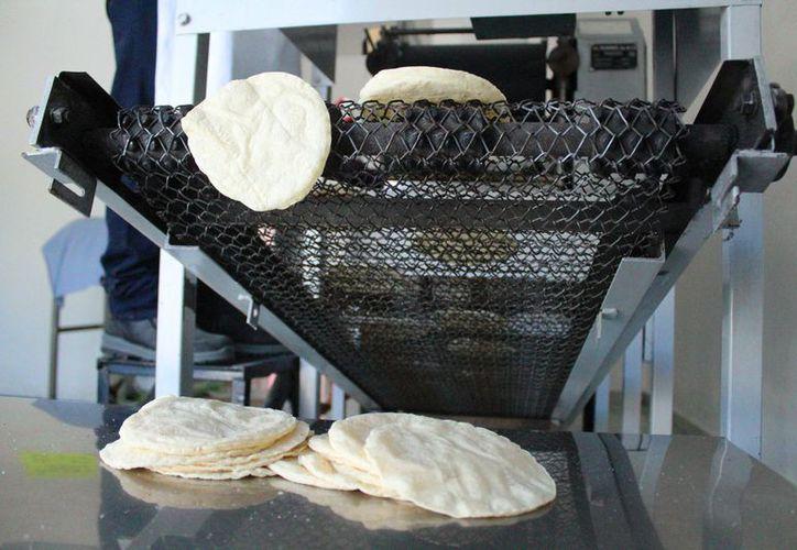 El precio del kilógramo de tortilla en Solidaridad sigue en un promedio de 18 pesos. (Octavio Martínez/ SIPSE)