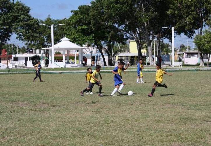 La rehabilitación del gimnasio deportivo Nohoch Suku'un servirá para que cientos de niños, adolescentes y jóvenes se integren a las actividades deportivas. (Redacción/SIPSE)