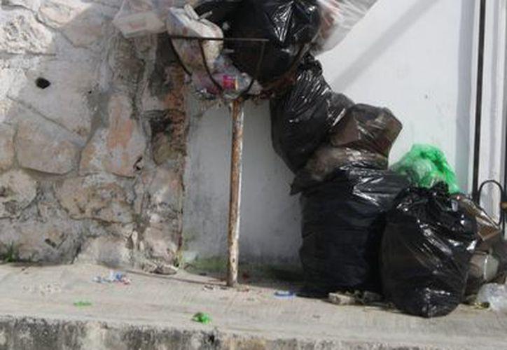 Piden a la población sacar la basura a tiempo por las mañanas. (Octavio Martínez/SIPSE)
