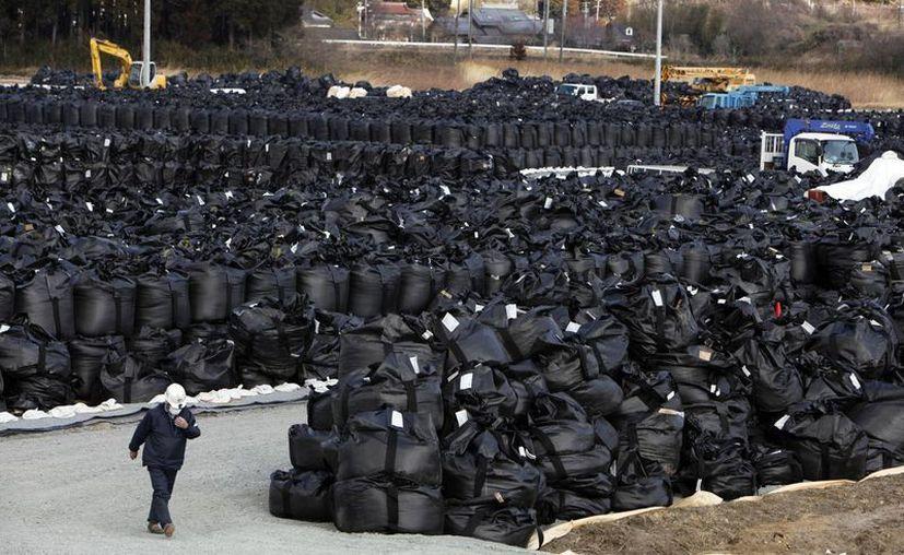 La eliminación de los escombros del tsunami es desaseada pues muchos trabajadores carecen de supervisión, capacitación o equipo adecuado. (Agencias)