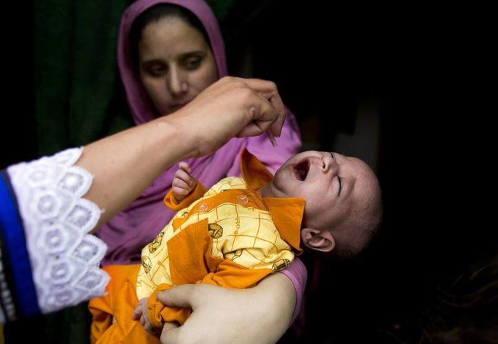 Imagen de un niño al ser vacunado en Rawalpindi, Pakistán. (Agencias)
