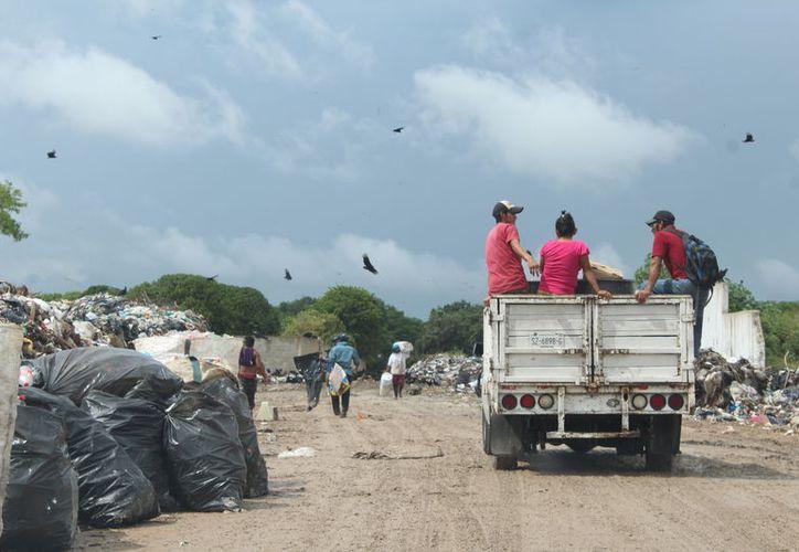 El problema de la recolección de basura en Chetumal está a punto de ser considerado una contingencia. (Daniel Tejada/SIPSE)