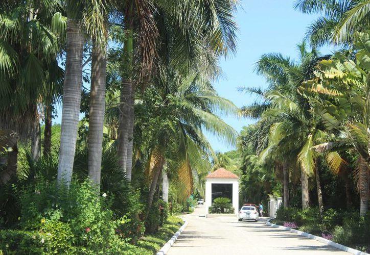 La CROC estima que los hoteles de Tulum tendrán una buena ocupación hasta la primera quincena de agosto. (Sara Cauich/SIPSE)