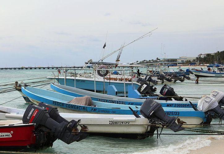 El lugar buscaría resguardar a las más de 200 embarcaciones de la zona. (Octavio Martínez/SIPSE)