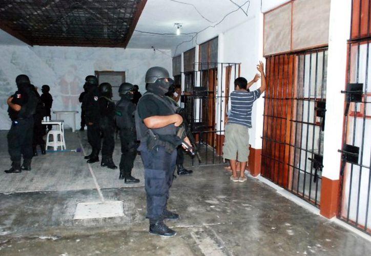 Se sospecha que los gallos eran utilizados para realizar peleas clandestinas con el fin de deleitar a los mil 180 reclusos. (Juan Palma/SIPSE)
