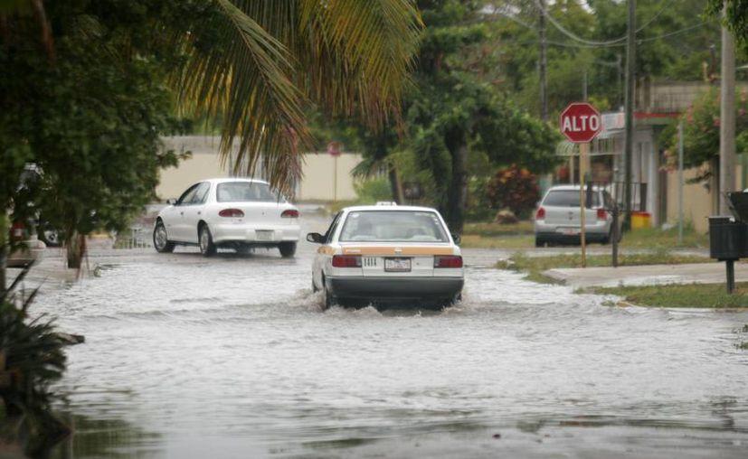El inicio de la temporada de lluvias causó estragos en las ocho microcuencas identificadas en la capital. (Harold Alcocer/SIPSE)