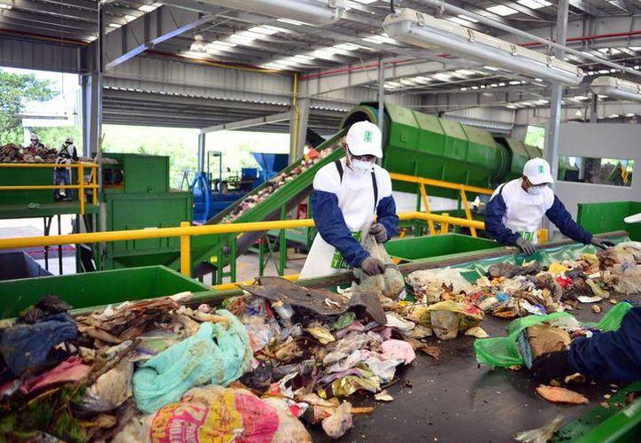 La planta de separación de residuos sólidos en Kanasín brindaría servicio a 13 municipios. (Milenio Novedades)