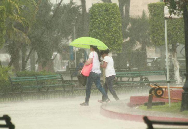 De acuerdo a la Conagua el calor y las lluvias se dejarán sentir este domingo en Yucatán. (Fotos: Jorge Acosta/Milenio Novedades)