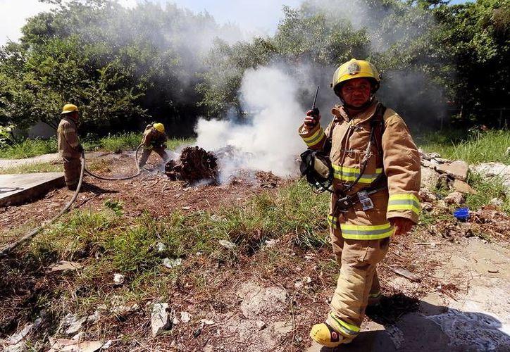 Del 2001 al 2009 se han registrado 12 incendios forestales. (Redacción/SIPSE)