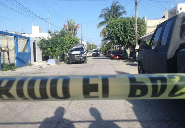 El hallazgo se registró en una de las calles de la Región 517. (Redacción/SIPSE)