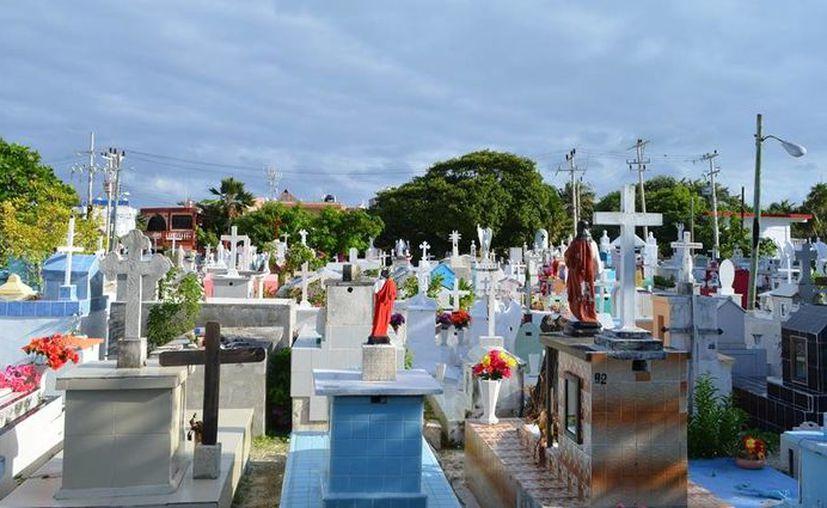 Los Colegios de Ingenieros y Arquitectos de Isla Mujeres emitirán un dictamen y verificarán los trabajos de reconstrucción de la barda perimetral.       (islamujeres.gob.mx)