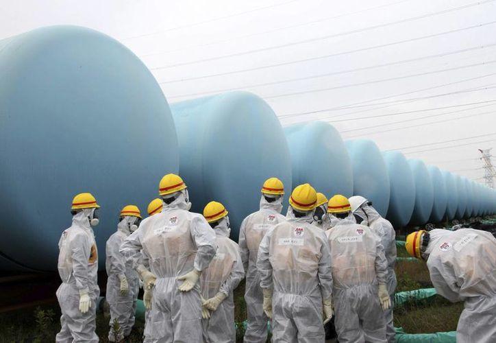 Los trabajadores de la planta nuclear tratan de determinar cómo las sustancias radiactivas lograron filtrarse. (EFE)
