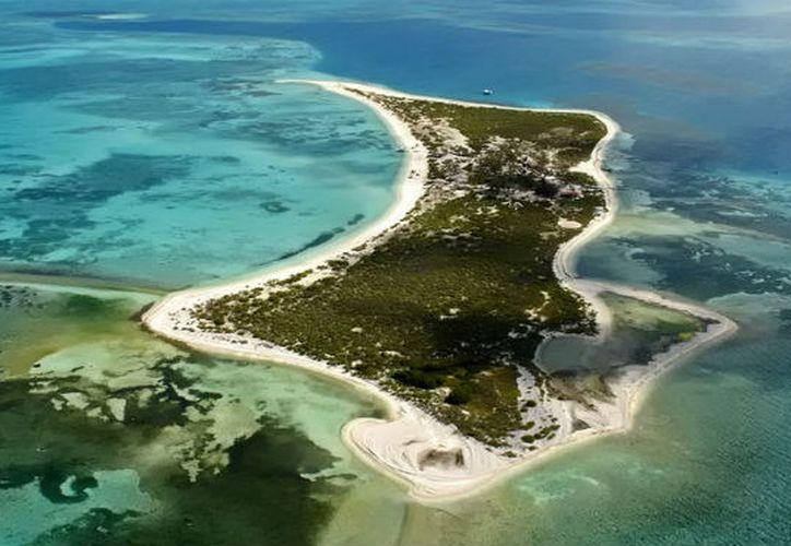 El proyecto busca hacer conciencia social sobre el rescate del Parque Nacional Arrecife Alacranes. (Milenio Novedades)