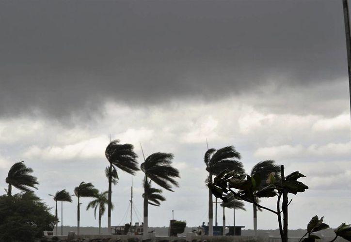 Autoridades piden estar alerta de la información meteorológica emitida en los canales formales. (Carlos Horta/ SIPSE)