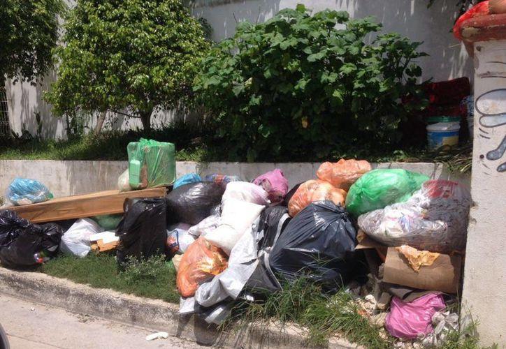 Habitantes del municipio de Solidaridad piden a la nueva administración que solucione el problema de la recolección de basura.  (Daniel Pacheco/SIPSE)