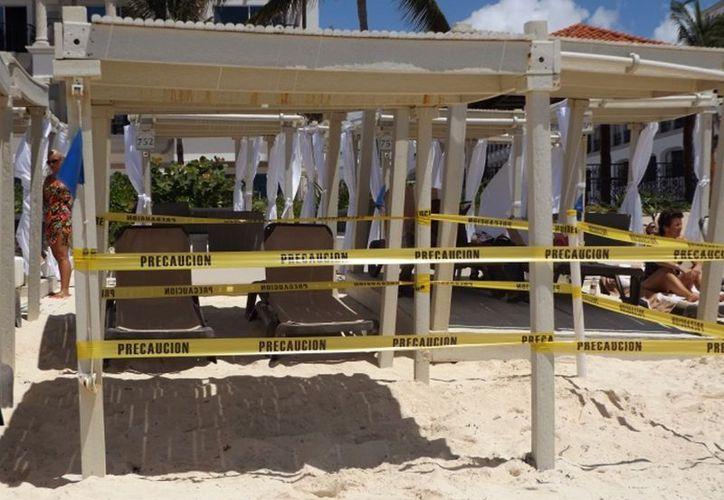 El año pasado se detectaron saqueos de nidos de tortugas marinas. (Adrián Barreto/SIPSE)