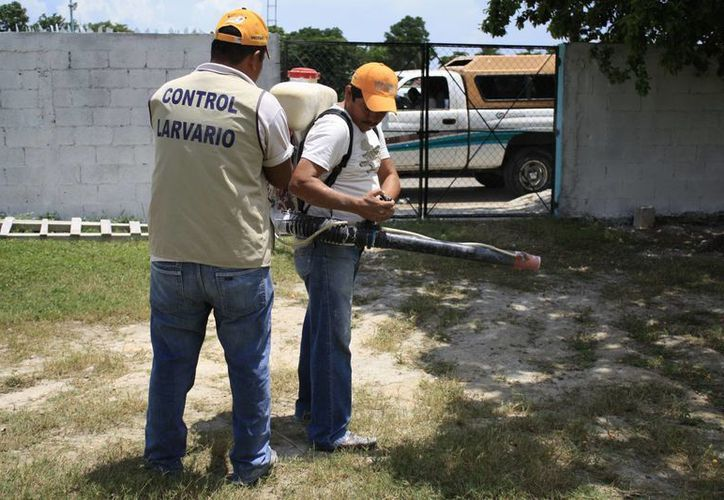 Autoridades trabajan en campañas de fumigación para la eliminación de criaderos de moscos. (Redacción/SIPSE)