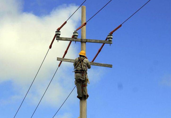 La paraestatal implementa obras en diferentes puntos del municipio. (Luis Soto/SIPSE)