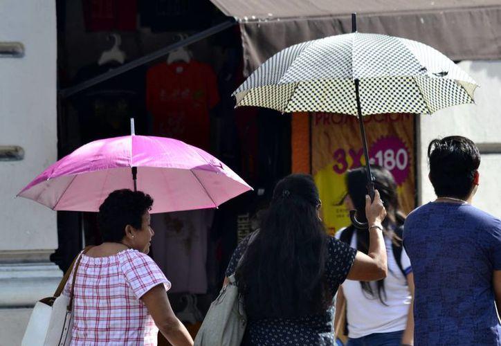 Se esperan temperaturas por arriba de los 35 grados para los próximos días en la Península de Yucatán. (Milenio Novedades)
