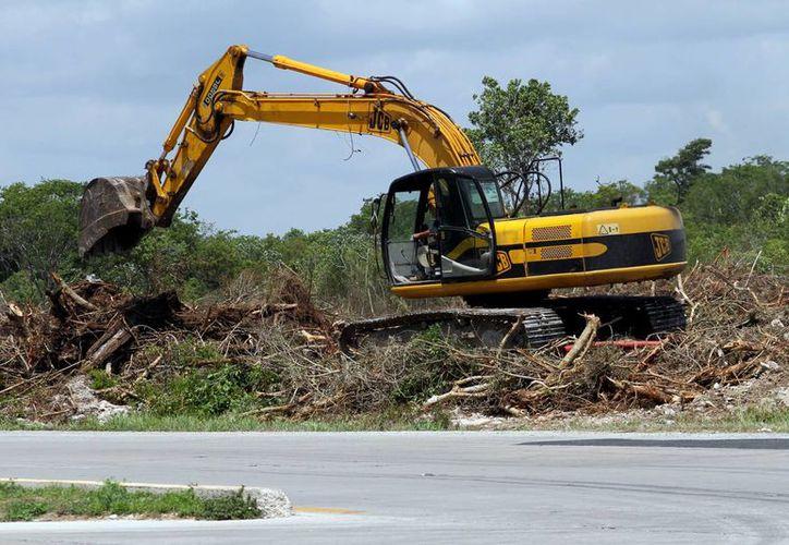 Muchas de las clausuras que sí se efectúan se dan en el ramo de la construcción. (Adrián Barreto/SIPSE)