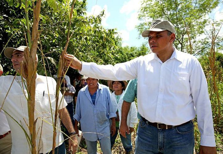 """En gira de trabajo por los municipios de Yobaín y Sinanché, el Gobernador visitó las unidades productivas """"Víctor Cervera Pacheco"""" y """"La Central"""". (Cortesía)"""