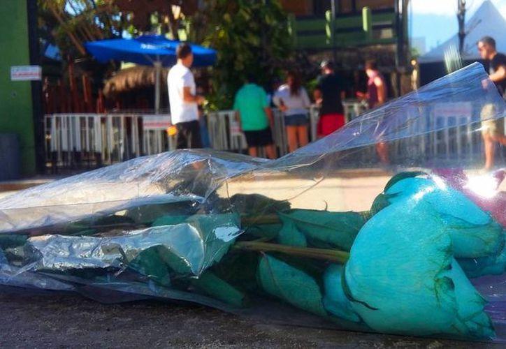 Las autoridades denunciaron que el Blue Parrot incumplió con los protocolos de seguridad. (Daniel Pacheco/SIPSE)