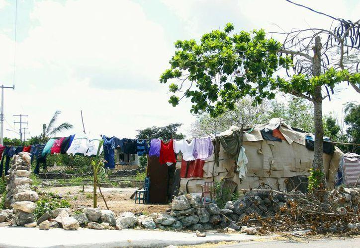 Algunas familias invaden terrenos para obtener un espacio para vivir. (Milenio Novedades)