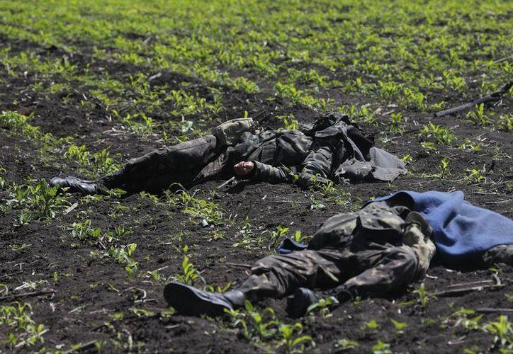 Los cadáveres de los soldados quedaron diseminados en torno de un retén cerca de la aldea de Blahodatne, en las afueras de Volkovaja, 30 kilómetros al sur de Donetsk. (Foto: AP)