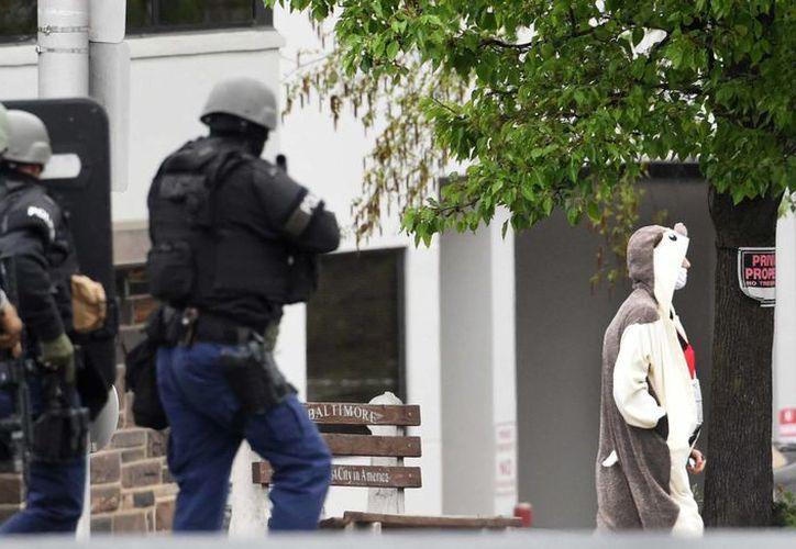 El sujeto disfrazado de oso panda fue herido por la policía de Baltimore: fue identificado como un contratista y se ignoran los motivos de su acción. (AP)