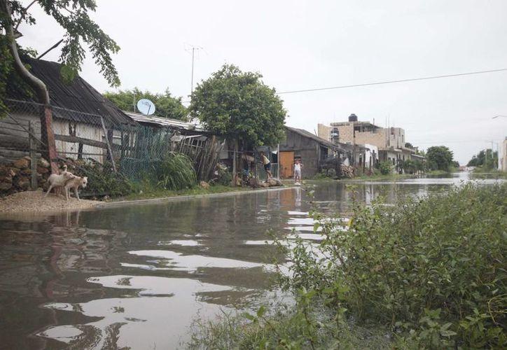 El primero en presentar su Programa de Desazolve de Pozos es el municipio de Othón P. Blanco. (Harold Alcocer/SIPSE)