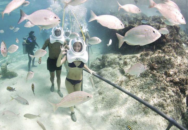 Cancún es punto de partida para divertidas actividades y tours de aventura en el Caribe Mexicano. (Israel Leal/SIPSE)