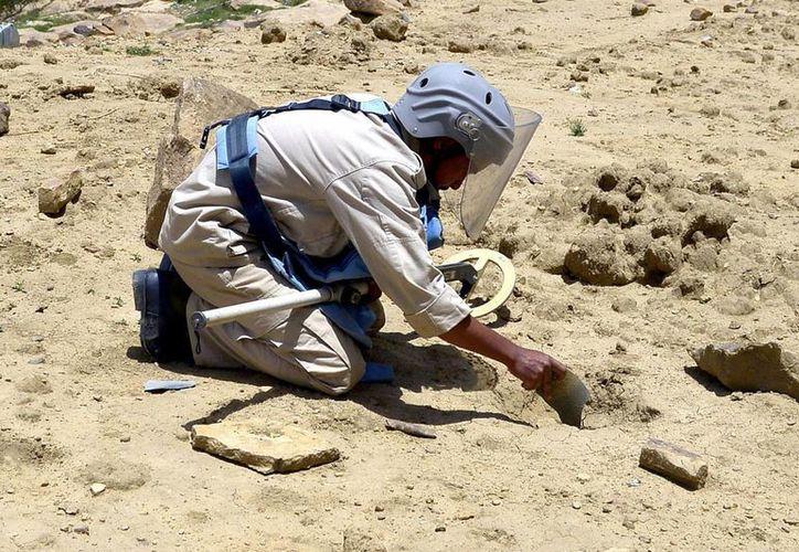 Un desminador yemení trabaja en un área de la provincia de Amran hoy. (EFE)