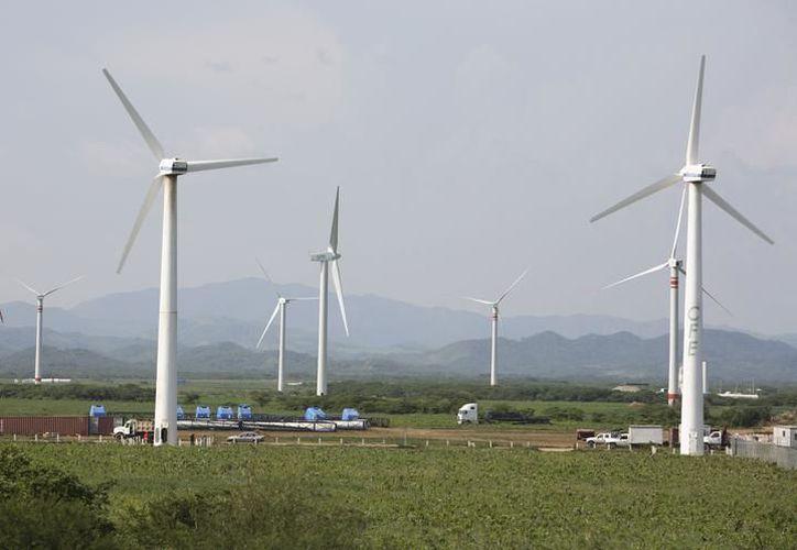 En los próximos cuatro años, en Yucatán se instalarán 18 parques eólicos, que representan una derrama económica de dos mil 800 millones de dólares. (SIPSE)
