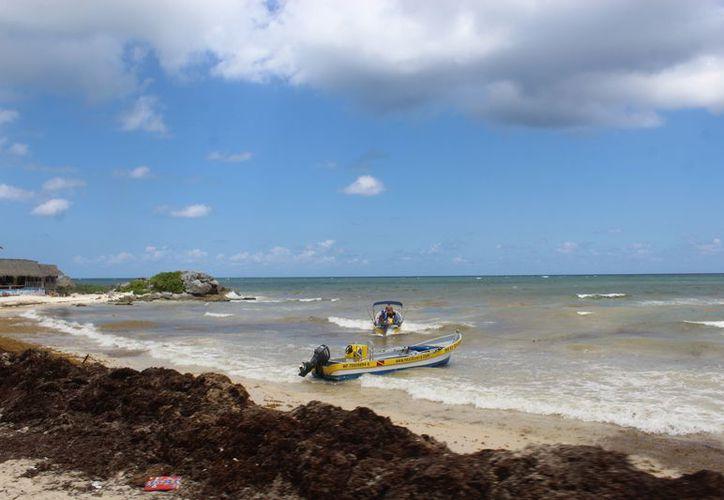 Indican que no todo el litoral del municipio puede ser atendido por personal de Zofemat. (Sara Cauich/SIPSE)