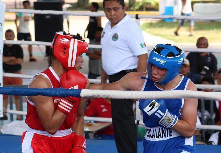 Boxeadores de todas partes de Yucatán se eliminaron entre sí para sacar a los 23 mejores, que representarán al estado del 23 al 26 de marzo tanto en Tabasco, dentro de la fase regional de la Olimpiada, como en el Nacional Juvenil. (SIPSE)