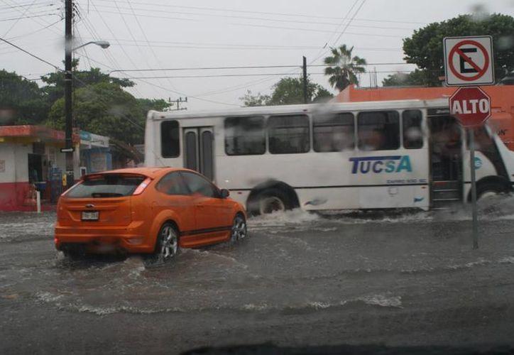 La actividad se vio afectada por las precipitaciones. (Loana Segovia/SIPSE)