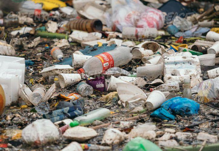 Greenpeace dio a conocer la lista de las 10 compañías que generan más basura. (Greenpeace)