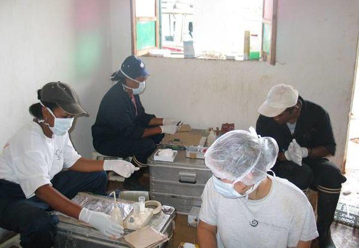 La organización internacional agregó que trabaja con la Cruz Roja y las autoridades de salud de Madagascar para controlar la enfermedad. (es.ird.fr)