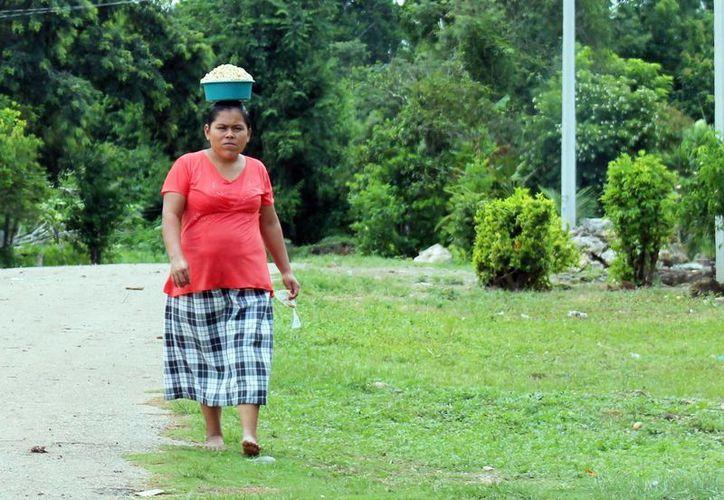 Miles de personas se encuentran desempleadas y en la zozobra respecto a su futuro en la zona rural. (Carlos Horta/SIPSE)