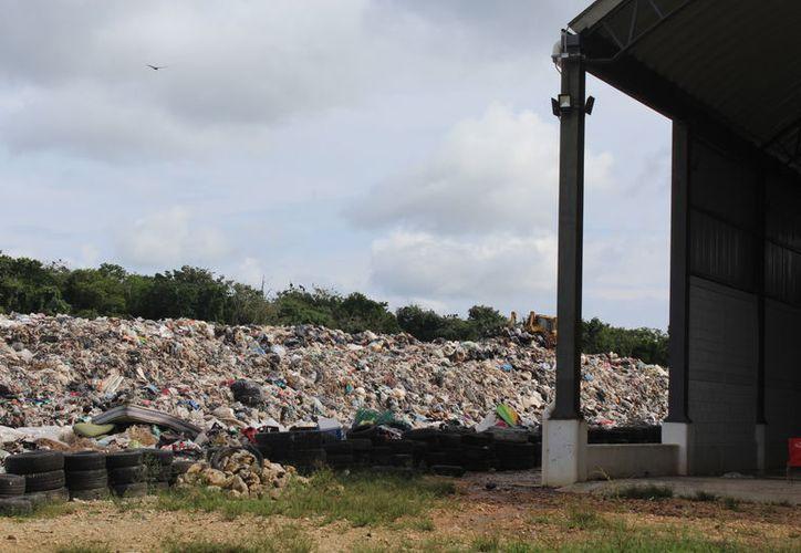 Aseguran que los festejos de fin de año incrementarán la entrada de basura al relleno. (Sara Cauich/SIPSE)