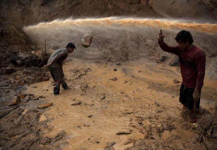 """Una corriente de agua pasa por encima de dos mineros conocidos como """"maraqueros"""", que retiran piedras y trozos de troncos de árboles que han sido liberados con la ayuda de un tipo rústico de chorro hidráulico conocido localmente como """"chupadera"""". (Agencias)"""