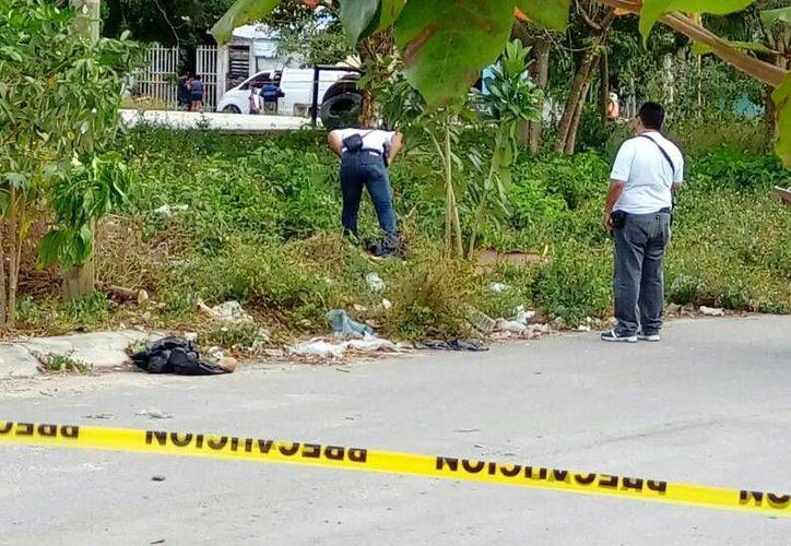Investigan los restos humanos hallados en el fraccionamiento Las Palmas. (Redacción)