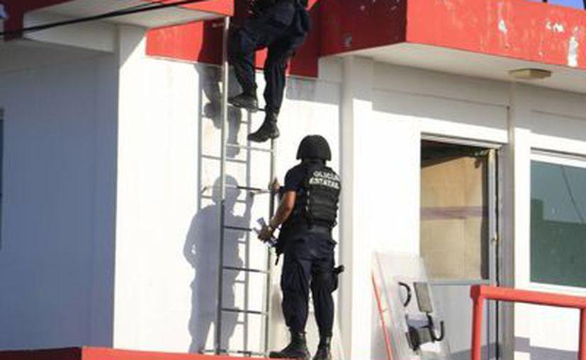 Elementos de todas las corporaciones policíacas acudieron al lugar. (Claudia Martín/SIPSE)