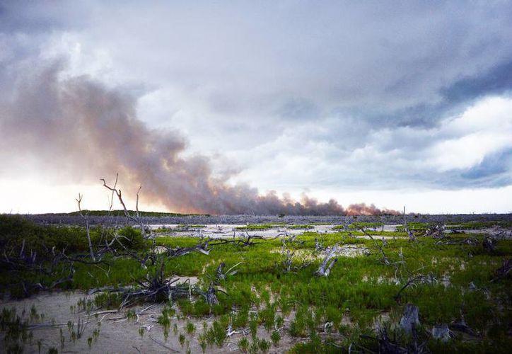 La columna de humo por el incendio llamó la atención de los veraneantes. (Milenio Novedades)