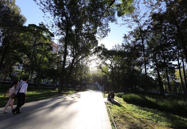 El Acuerdo de París contra el cambio climático entró en vigor este 4 de noviembre. México se comprometió con los Objetivos de Desarrollo Sostenible (ODS). Imagen de un parque arbolado de la Ciudad de México. (@ManceraMiguelMX)