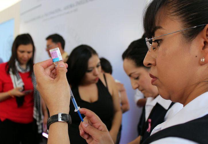 Modificar los meses de vacunación tendría mejor efecto en la población. (Foto: Milenio Novedades)
