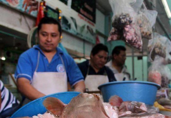 Expertos aseguran que el pescado es un alimento indispensable en la dieta y recomendado para todo rango de edades. (Milenio Novedades)