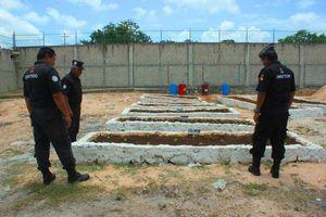 Reos de Playa del Carmen siembran, reparan y construyen en la cárcel